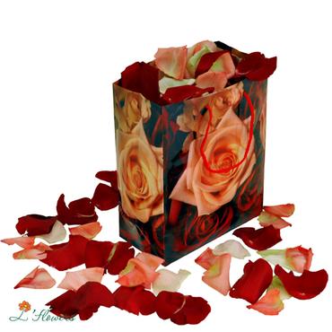 Roses - Rose petals - букеты в СПб